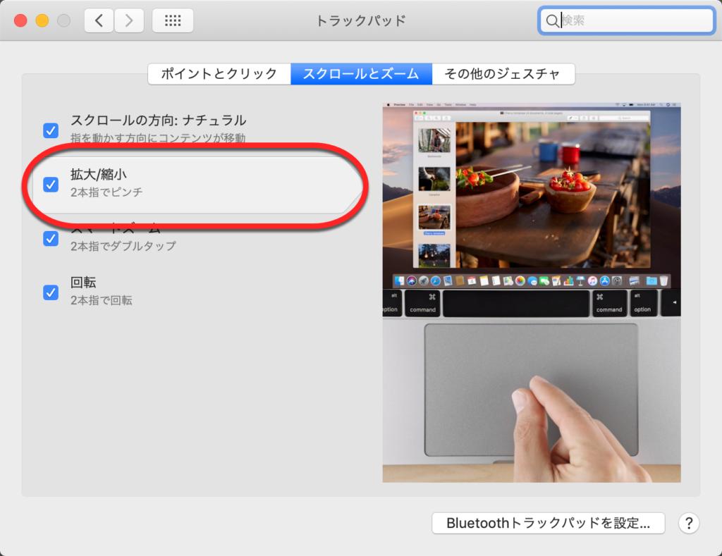 MACの設定画面からチェックボックスを確認する