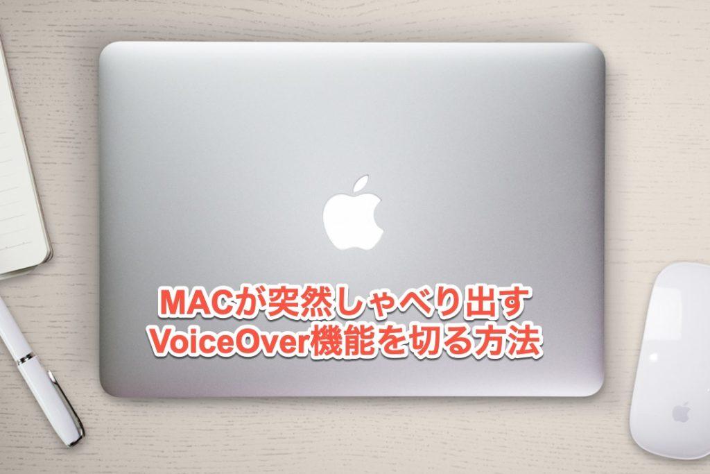 VoiceOverを切る手順